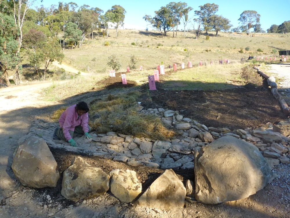 Sabina creating rockwork (we called it a riprap, which is vaguely accurate) to direct excess water from the road
