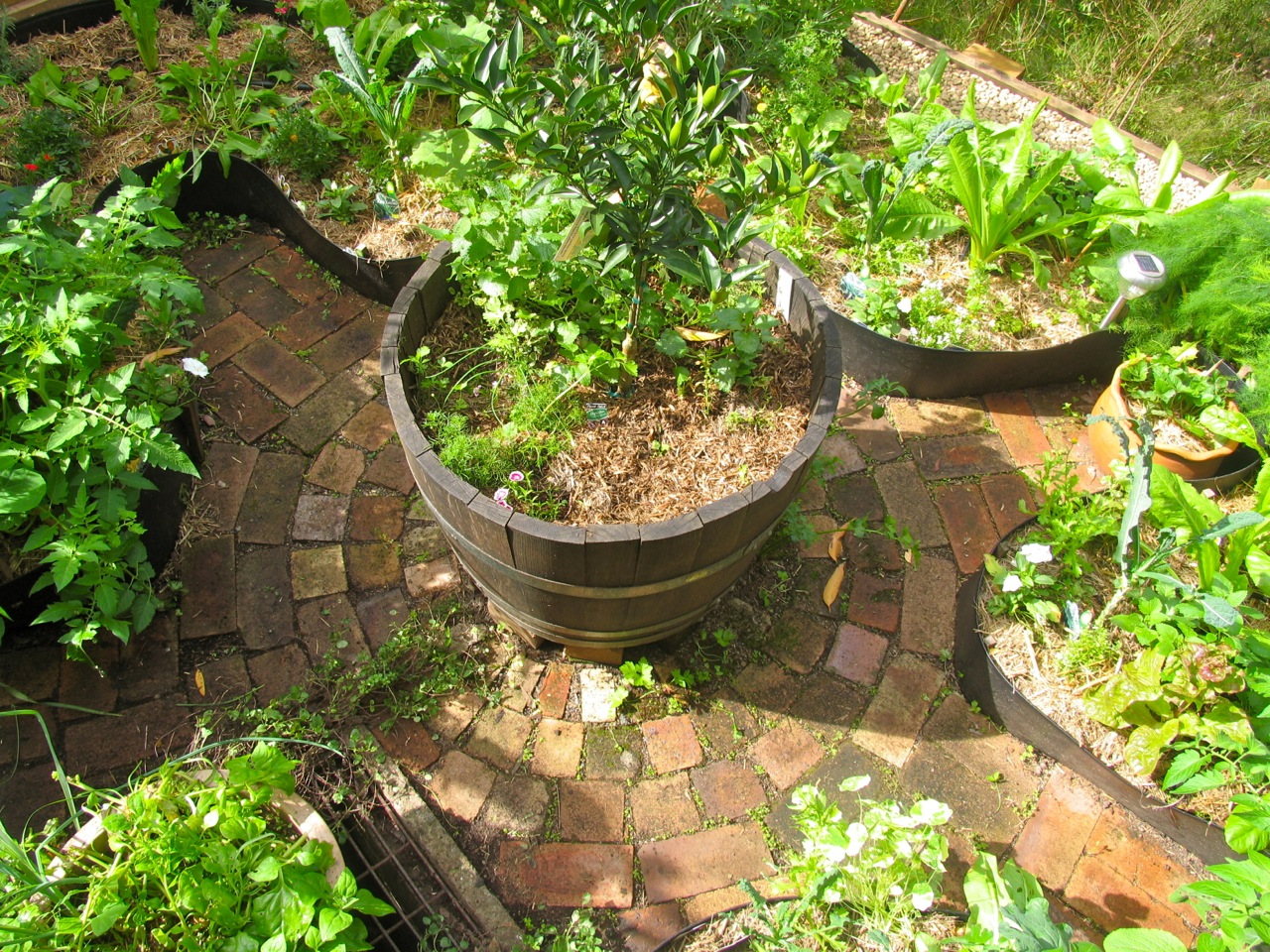 Giveaway introduction to permaculture book for Permaculture garden designs